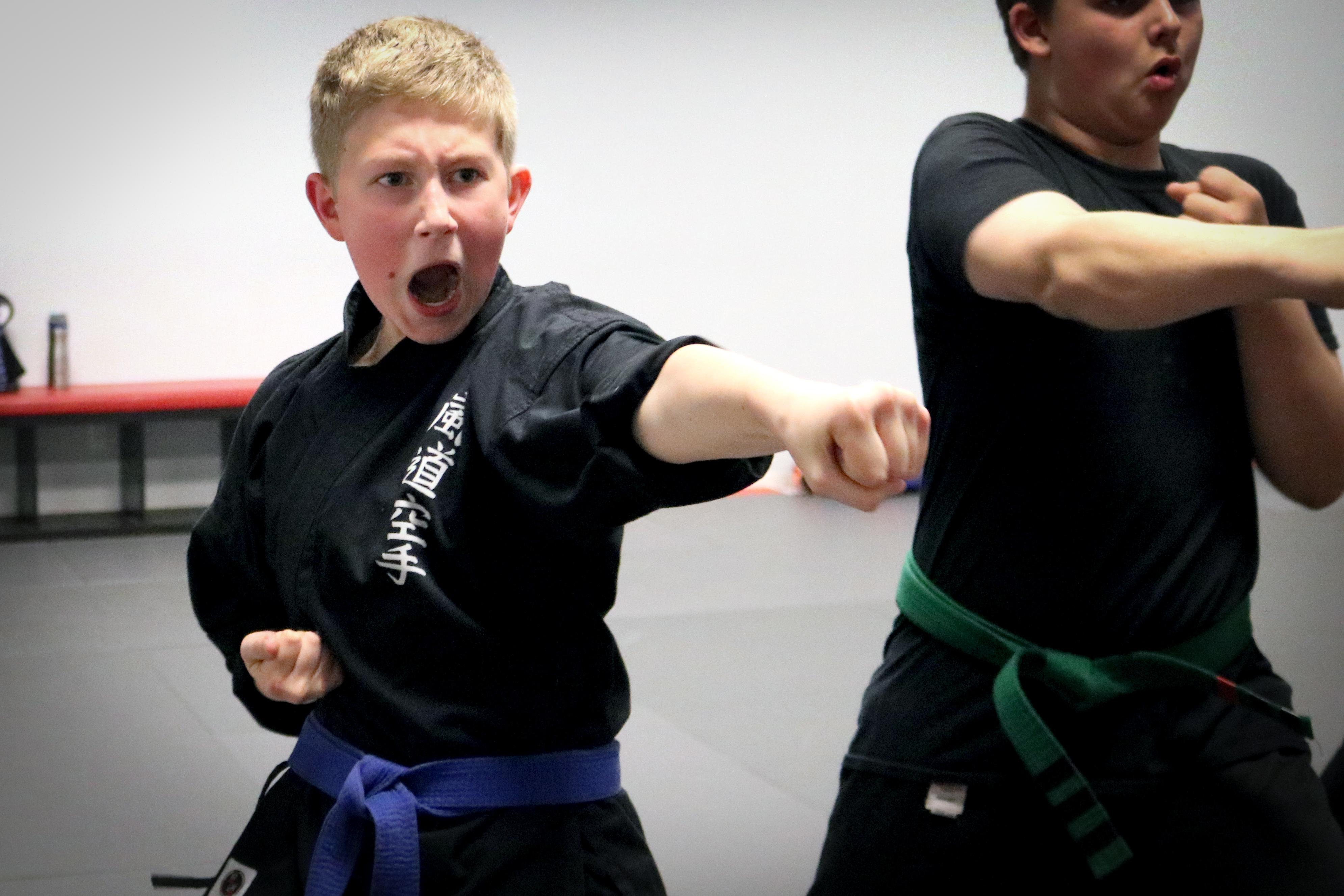 Karate Student Punching